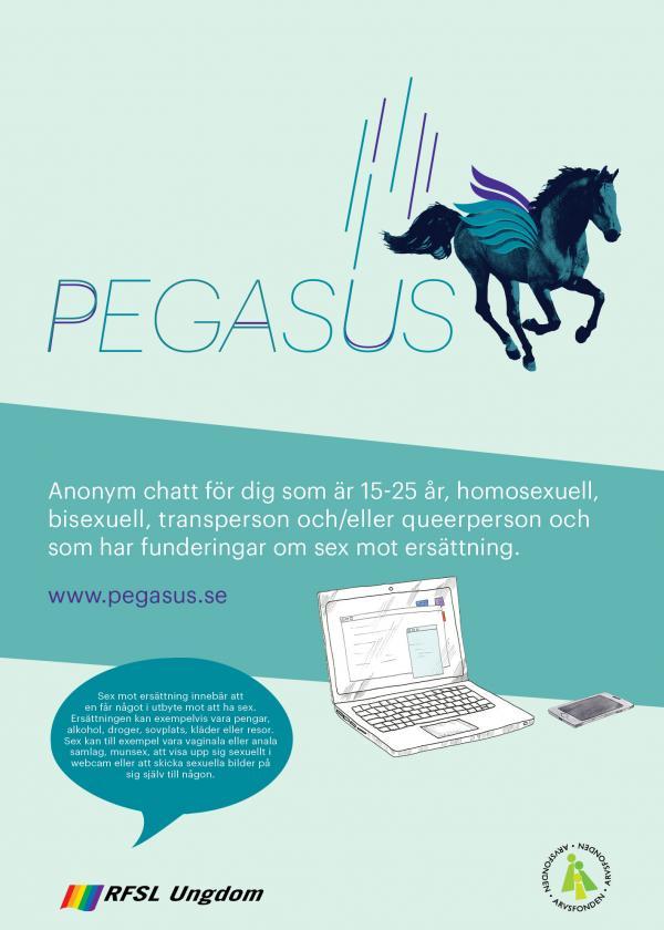 blå affisch med info om pegasus