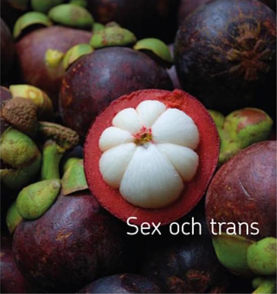 framsida praktikan om sex och trans