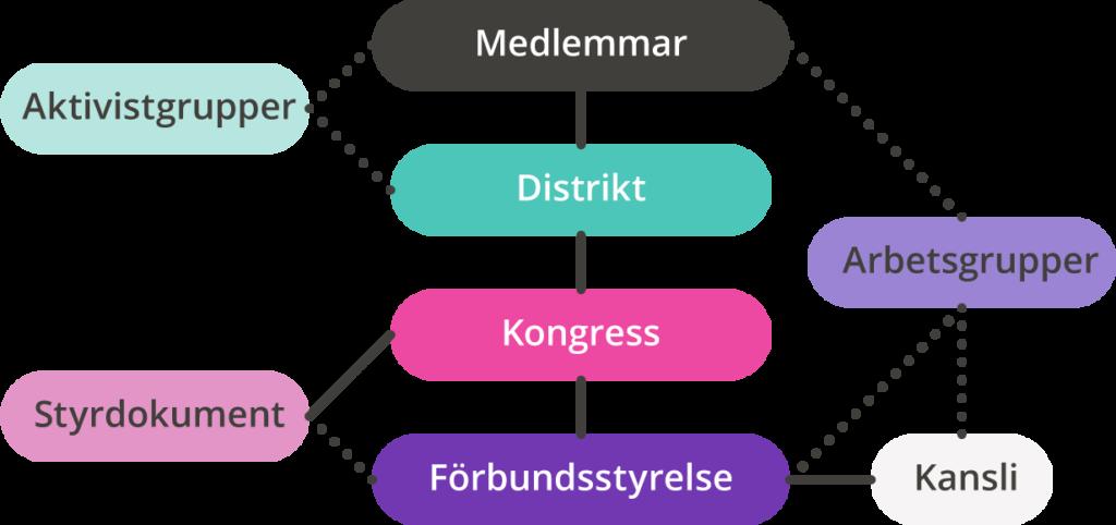 Illustration som förklarar hur RFSL Ungdom är uppbyggt.